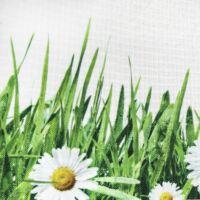 Egidia 7 tavaszi asztalterítő