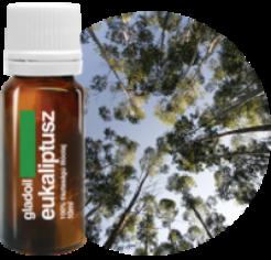Eukaliptusz illóolaj 10ml