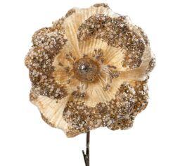 Jean virág