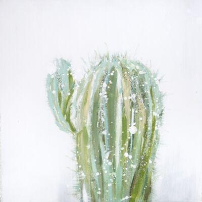 cactus-02-fali-kep