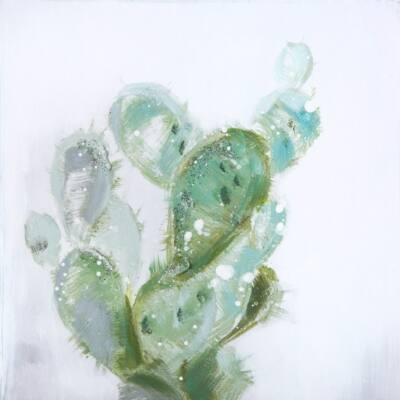 cactus-03-fali-kep