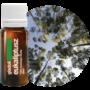 eukaliptusz-illoolaj-10006